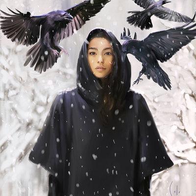 Solo art snow ravens 72