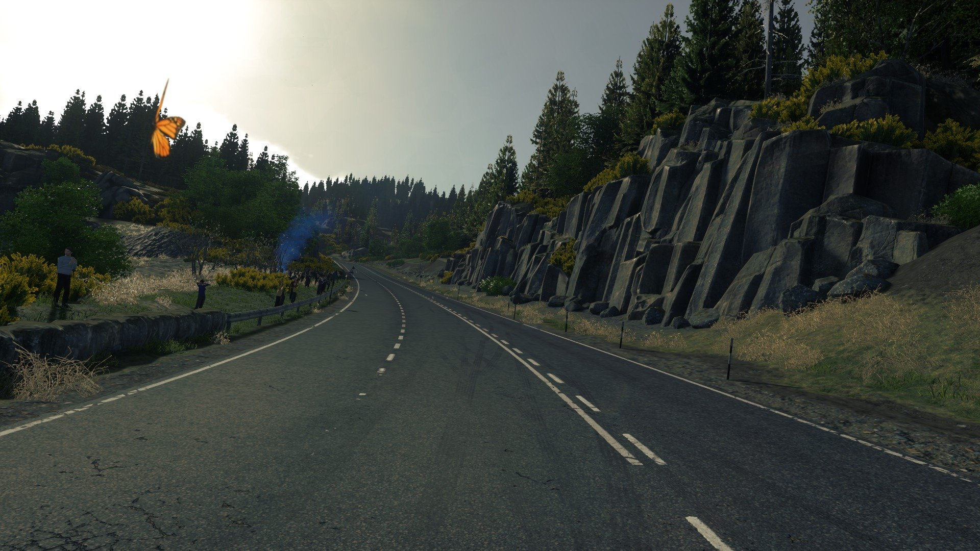 Anthony o donnell driveclub the kyle 006
