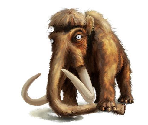 Murat kaya mammut2 copy