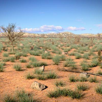 Robert welling desert 01 photo