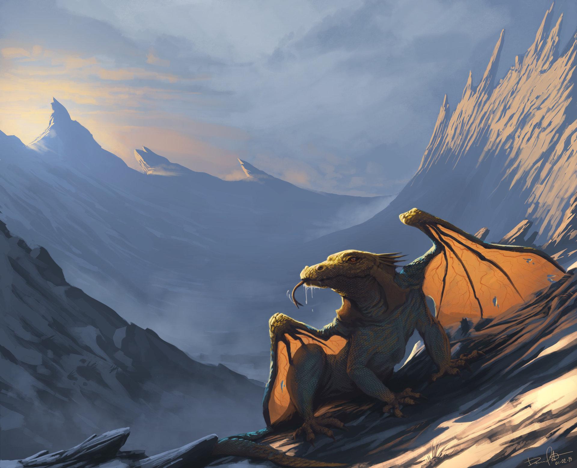 Daniel aubert dragon 1