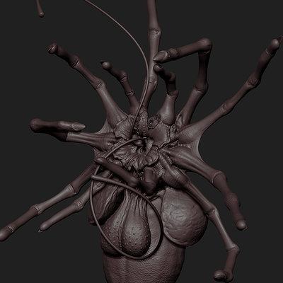 creepy bug