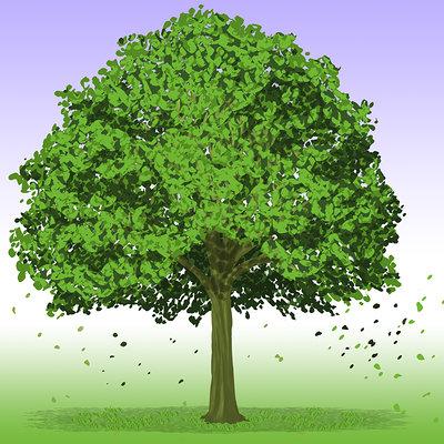 Aurelio filgueiras 322055 aurelio234 rvore tree