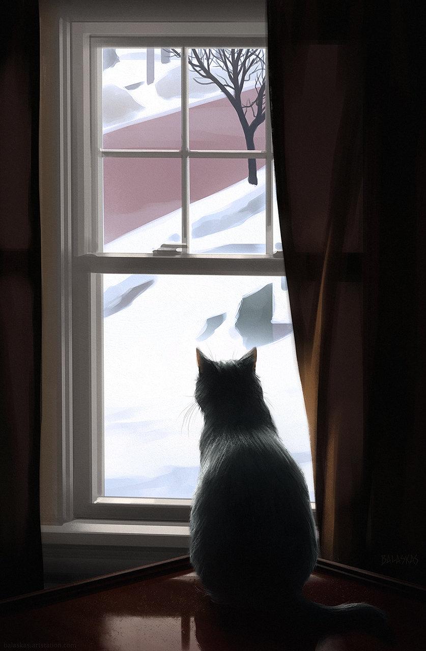 Christopher balaskas cat window as