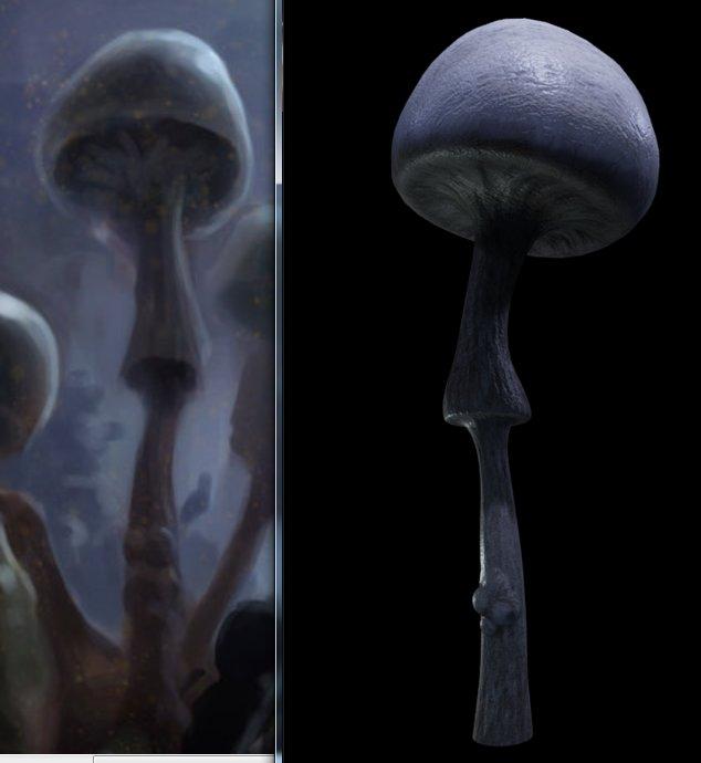 Dennis glowacki mushroom