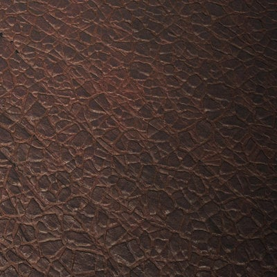 Hugo beyer leather substance color