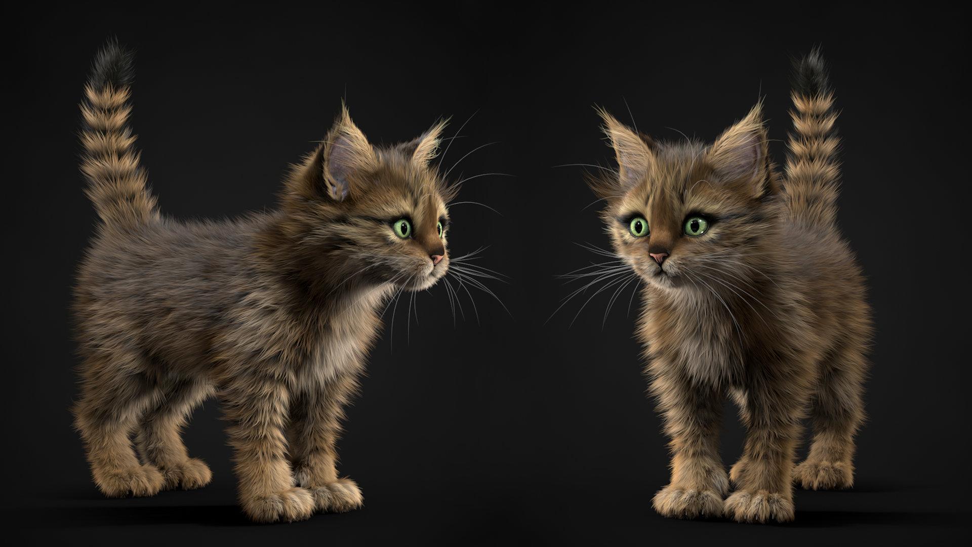 cinema 4d cat model에 대한 이미지 검색결과