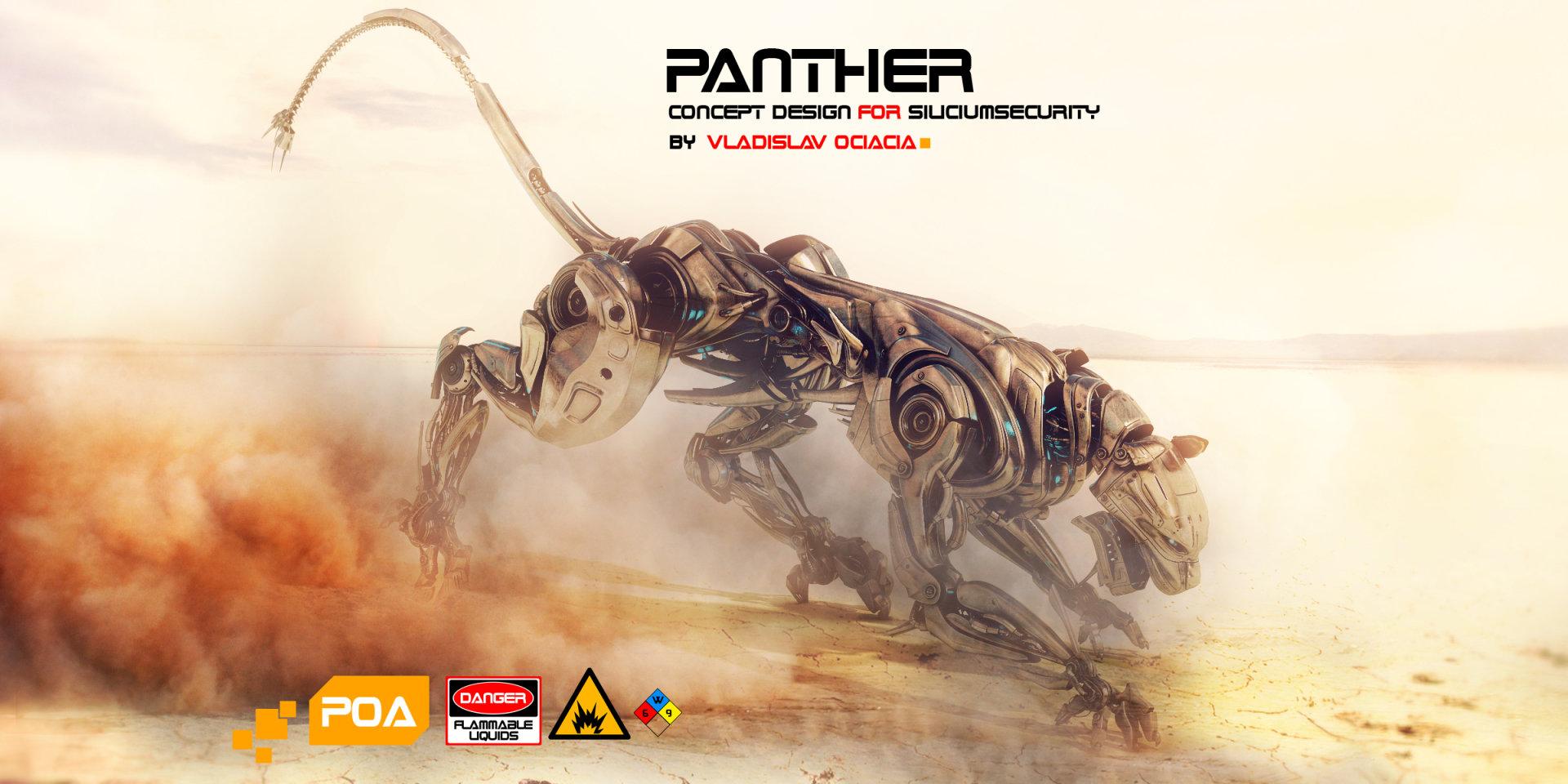Vladislav ociacia panther in desert 2