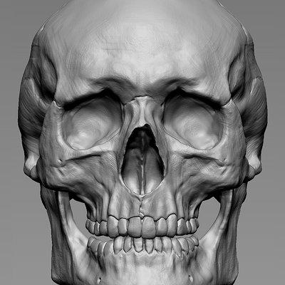 Dan bullock new skull turnaround 1