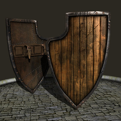 Marius popa shield 1
