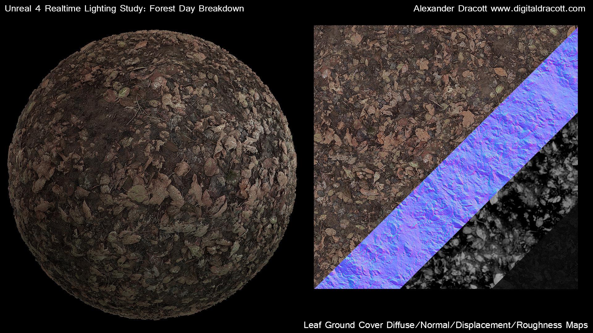 Alexander dracott forestbreakdown texturegroundleaves