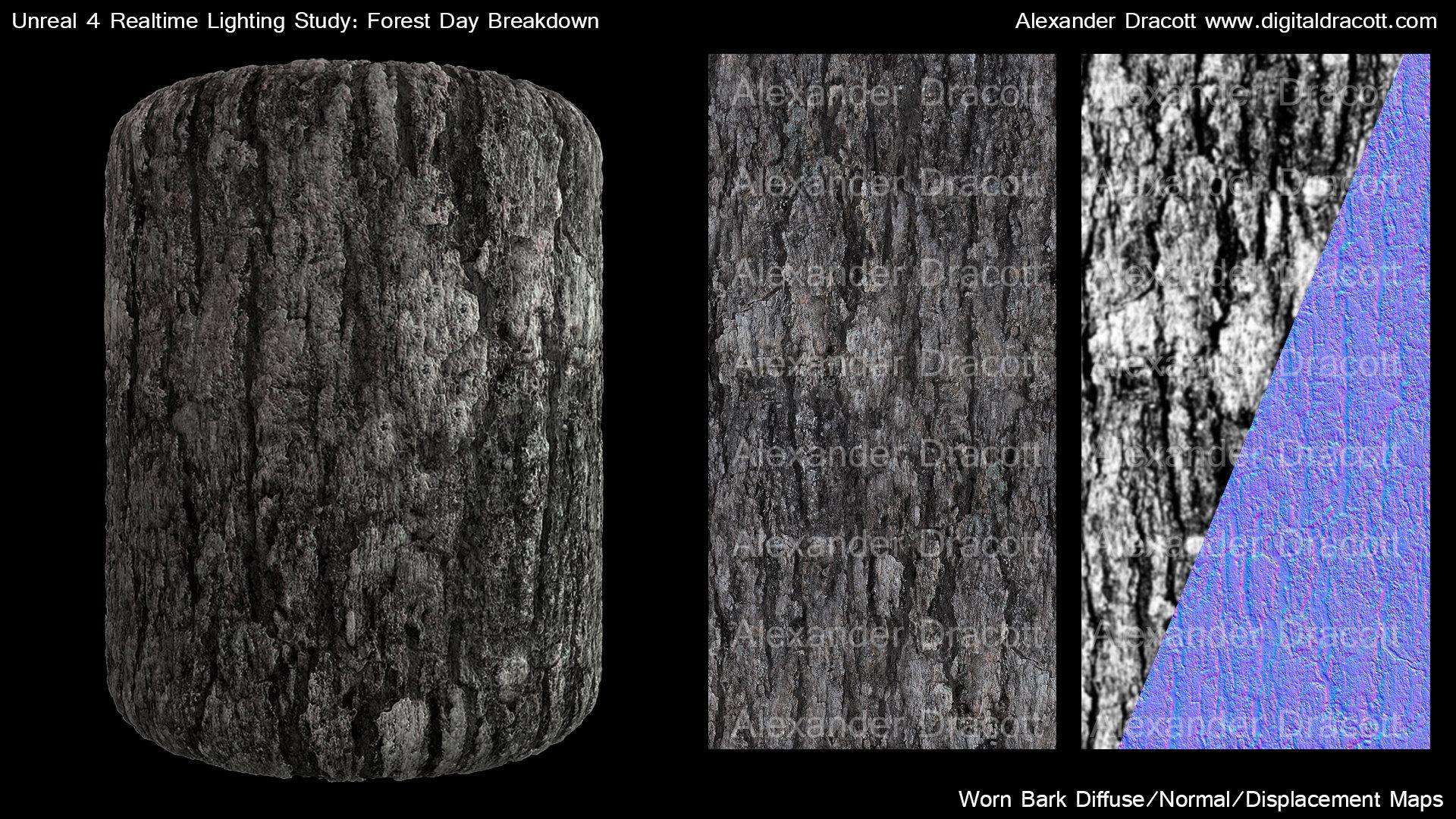 Alexander dracott forestbreakdown texturewornbark