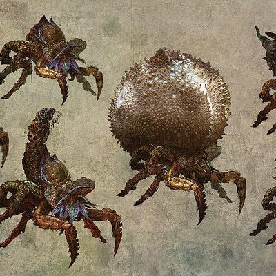 Bartlomiej gawel arachas