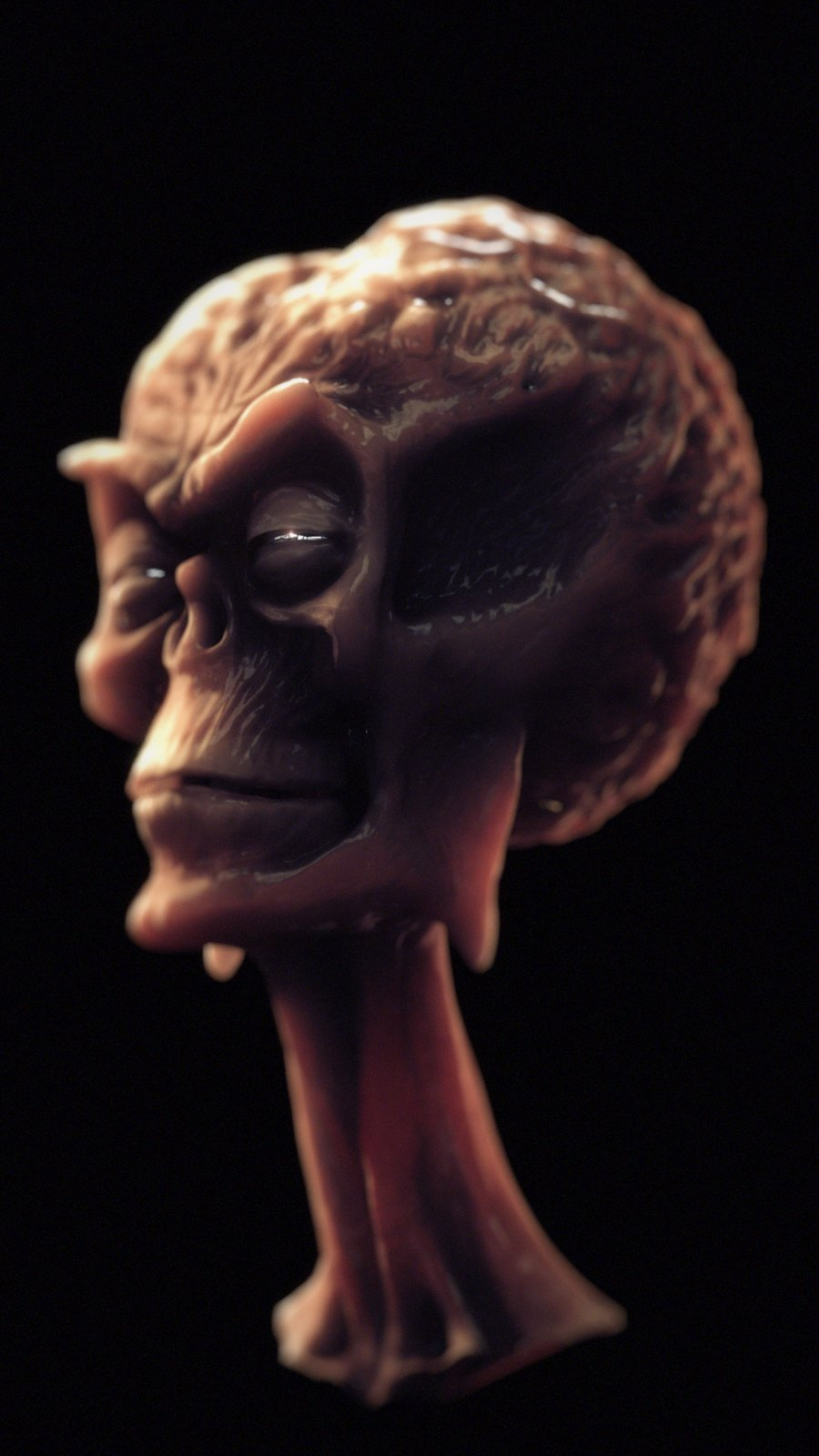 Sculpted out of Clay by Model Maker/Film Maker Steve Neil, and Scanned/cleaned by Charles Babbage, I took the mesh and created the lighting, materials, and Comp.