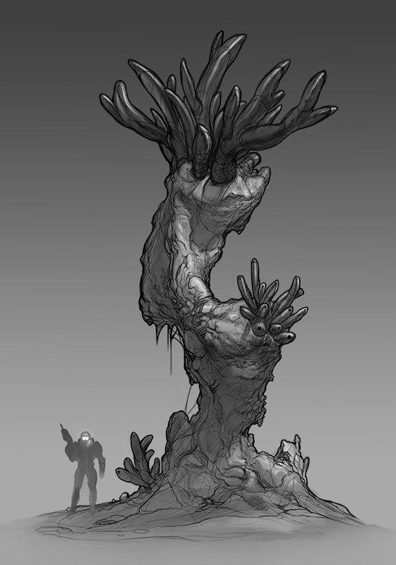 Worm Tree