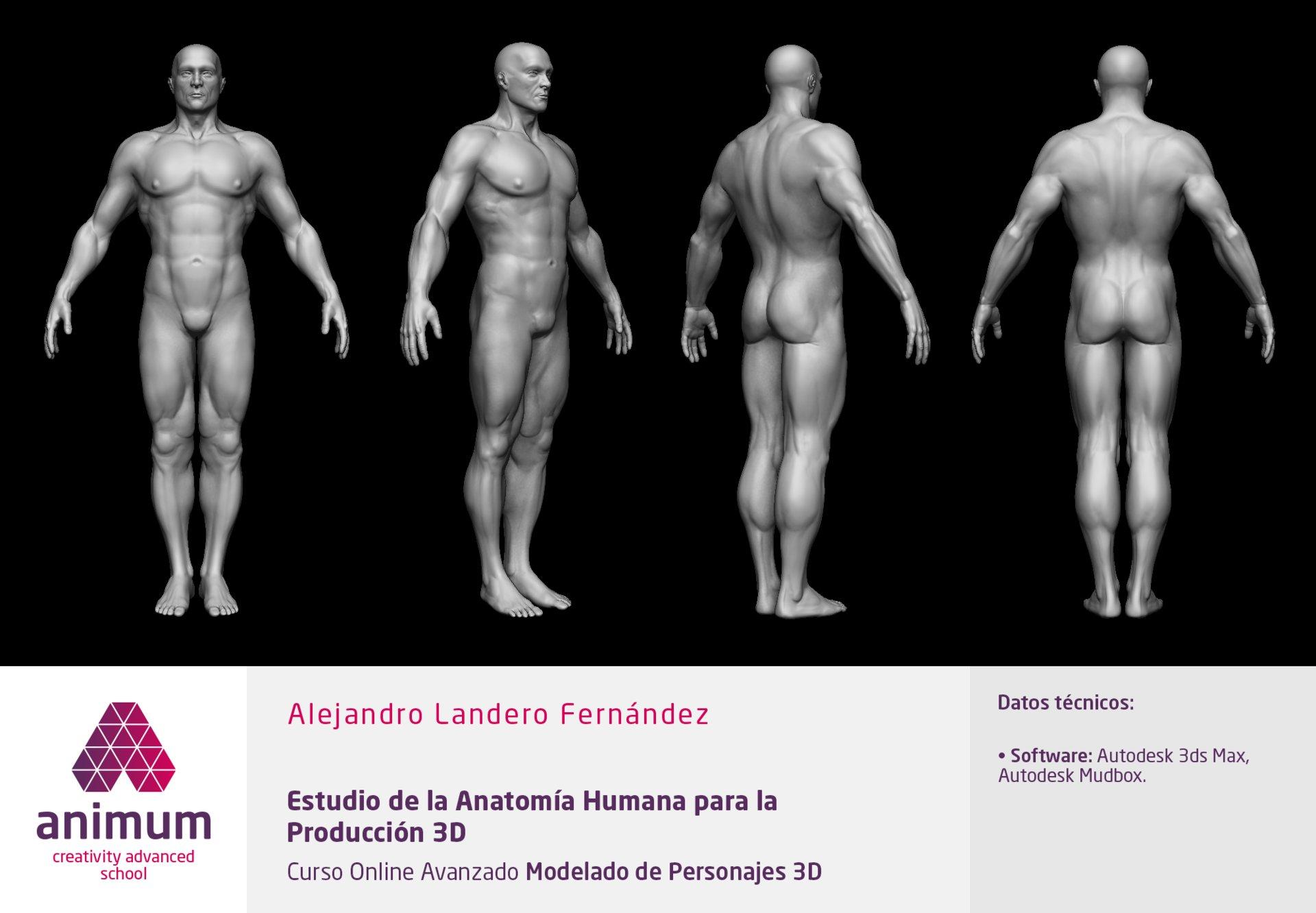 ArtStation - ANIMUM - CREATIVITY ADVANCED SCHOOL, Alejandro Landero