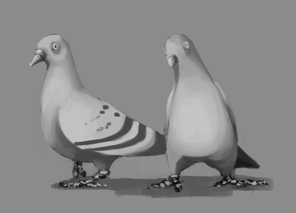 Michelle lo pigeons by justbunneh d6rwsk8