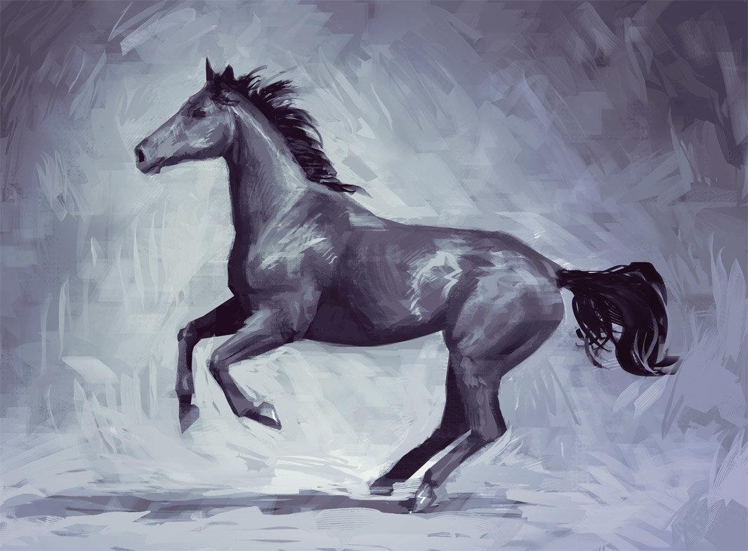 Sylvain sarrailh horse