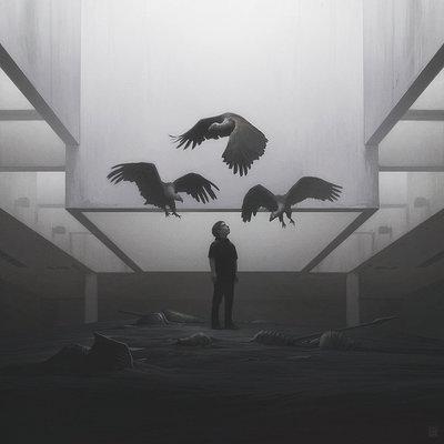 Yuri shwedoff vultures