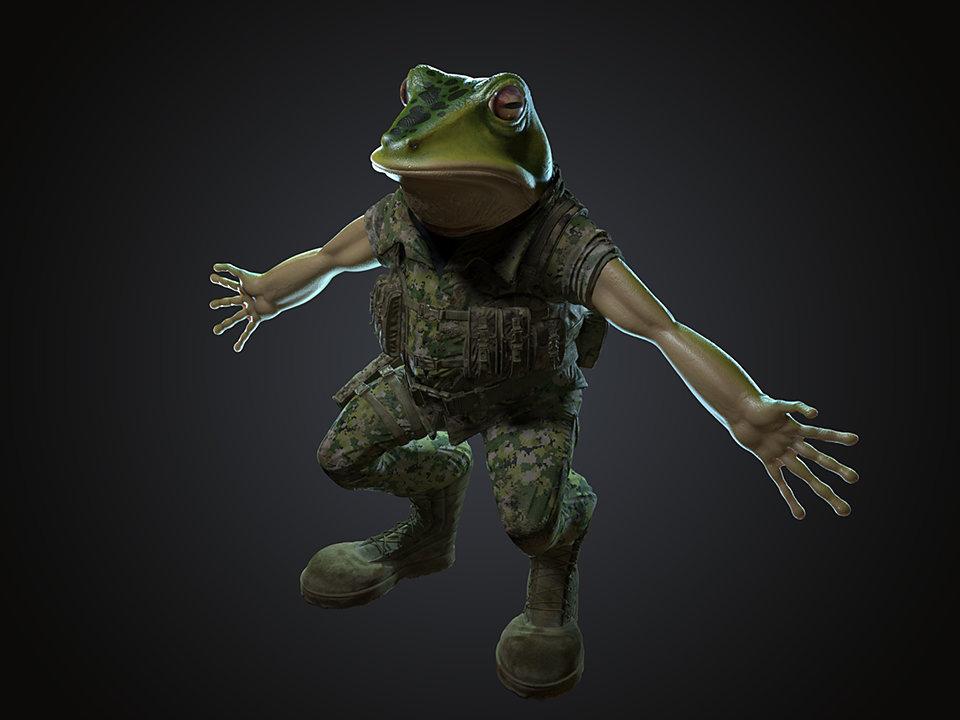 Sendoa bergasa frog wip 015