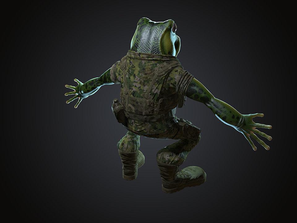 Sendoa bergasa frog wip 016