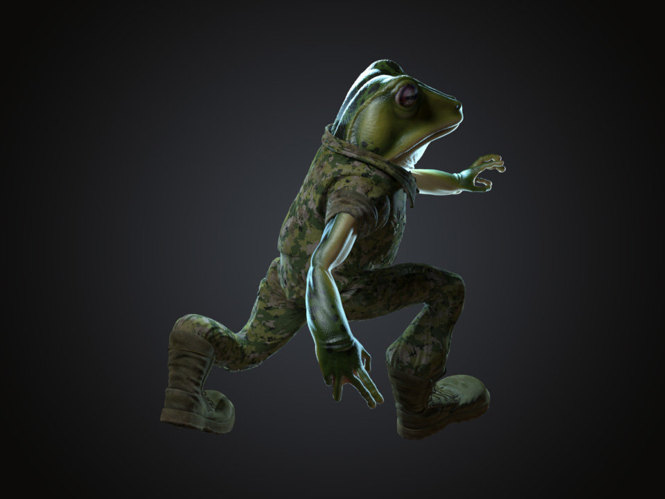 Sendoa bergasa frog wip 041