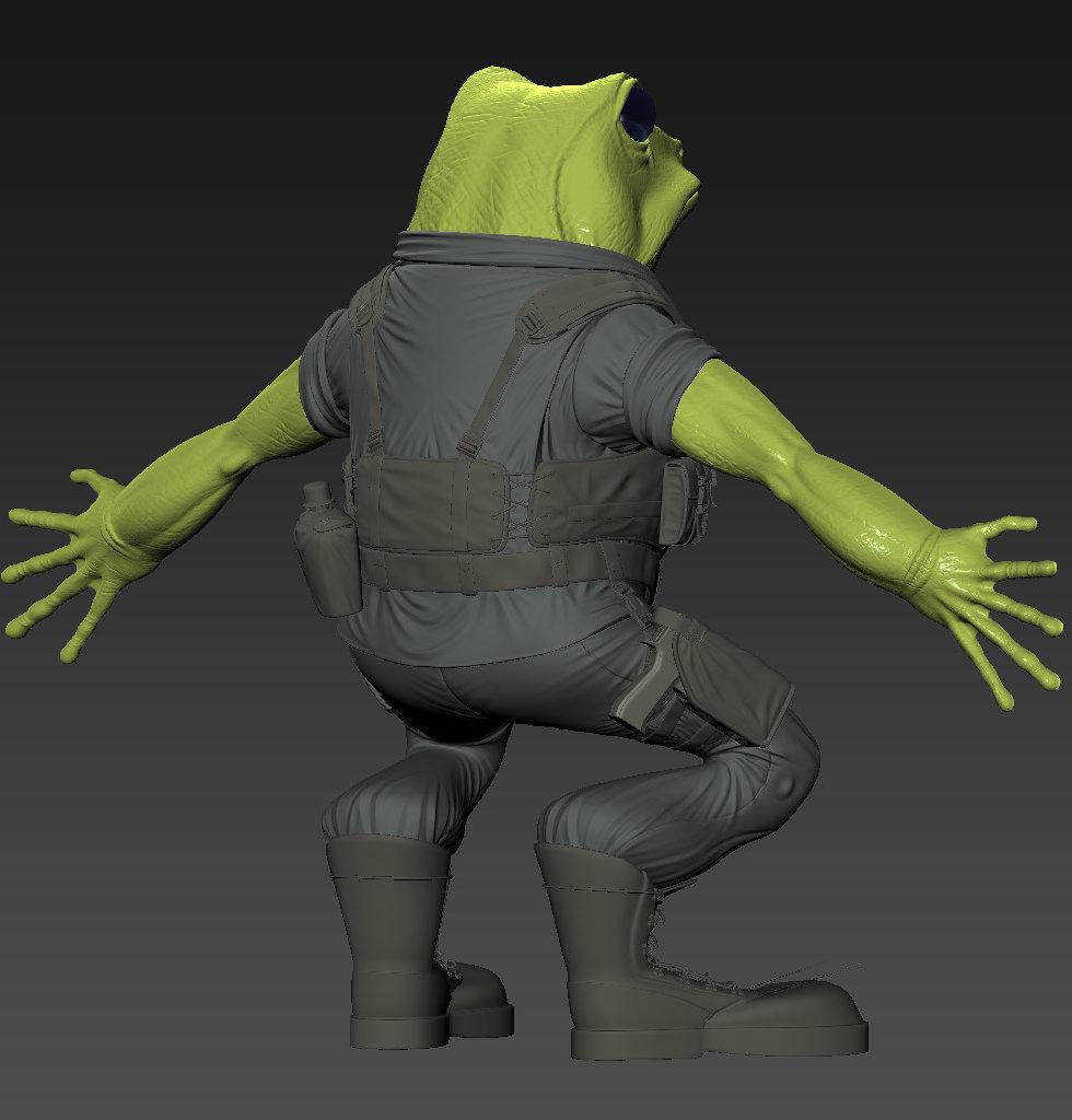 Sendoa bergasa frog wip 011