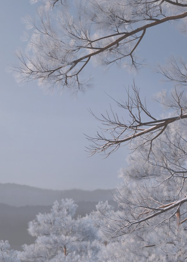 WIP image #3 Branch shader with show