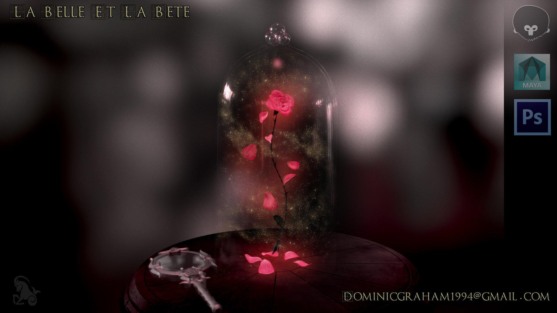 Dominic Graham La Belle Et La Bete