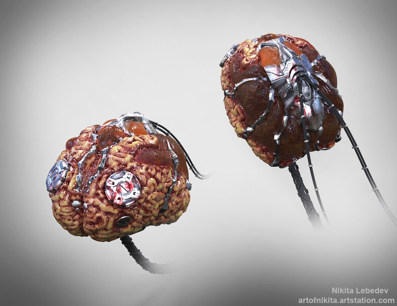 nikita-lebedev-brain-c.jpg?1432408900