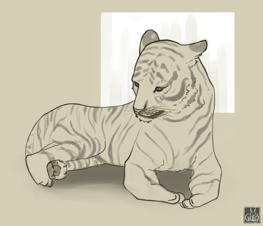Michelle lo wk08 tiger 01