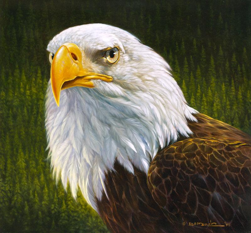 Bill melvin eagle