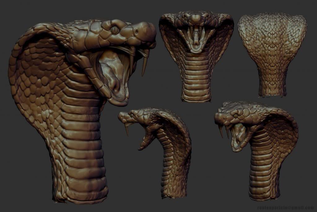 Raul aparicio snake
