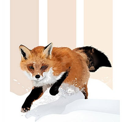 K fairbanks aswinterfox2 by kfairbanks
