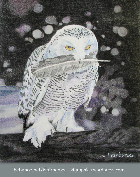 K fairbanks owlsnow by k fairbanks