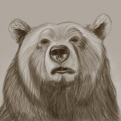 Leon bolwerk bear