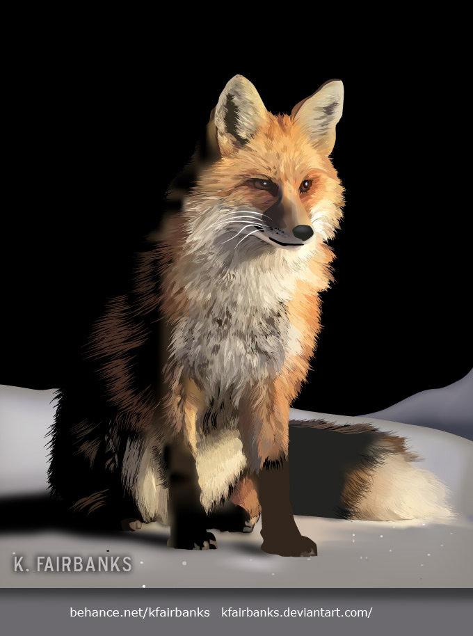 Fox in Snow digital drawing by K. Fairbanks