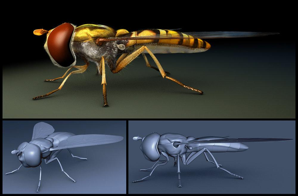 Bill melvin fly2