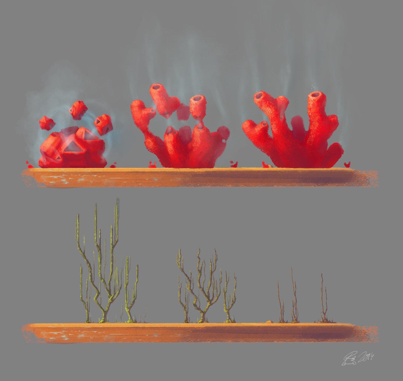 Plantlife Concept