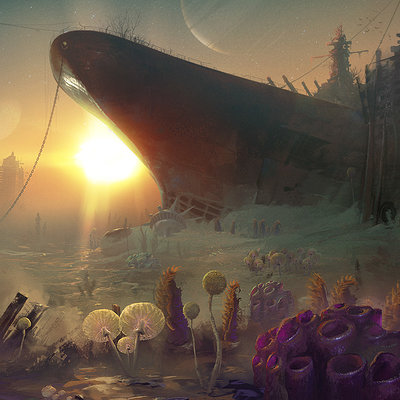 Vitali timkin vitali timkin red planet fungus