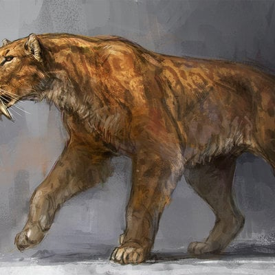 Jonathan kuo smilodon