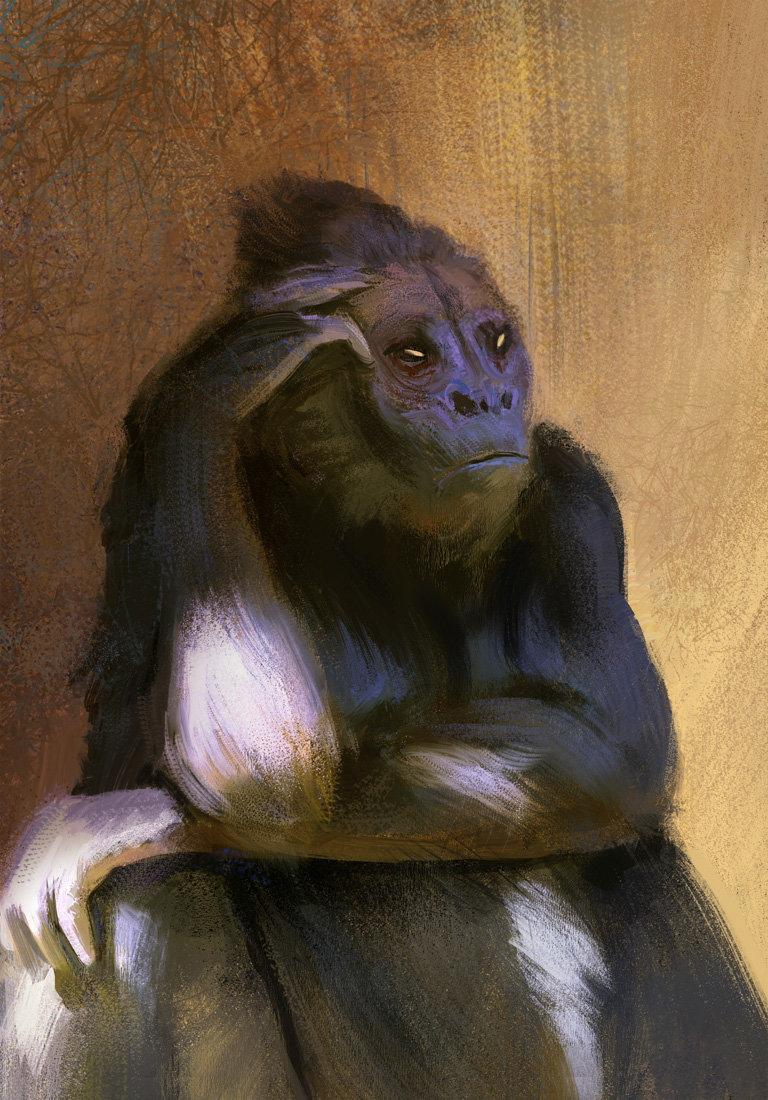 Hugo puzzuoli monkey hpuzzuoli