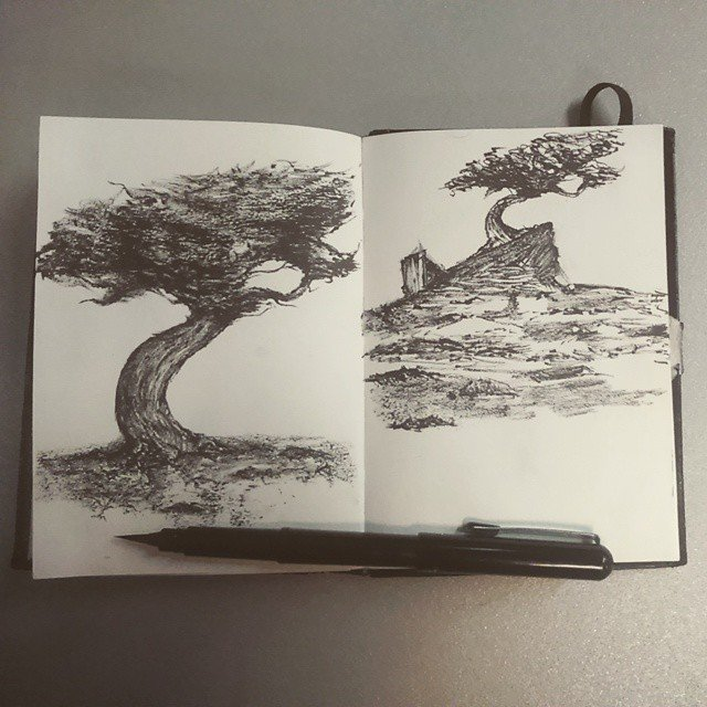 Quick Tree sketches with Black ink