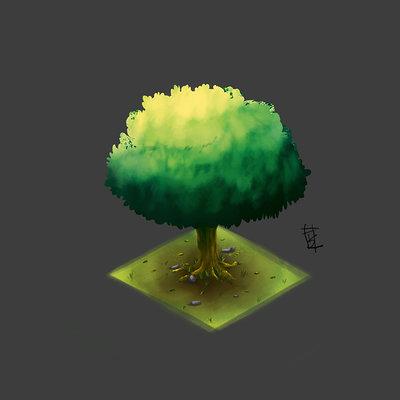 Taha yeasin isometric tree