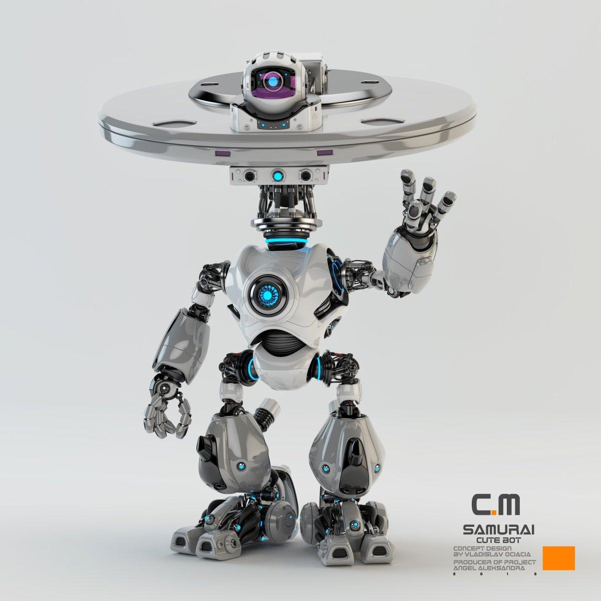 Vladislav ociacia samurai robot 1