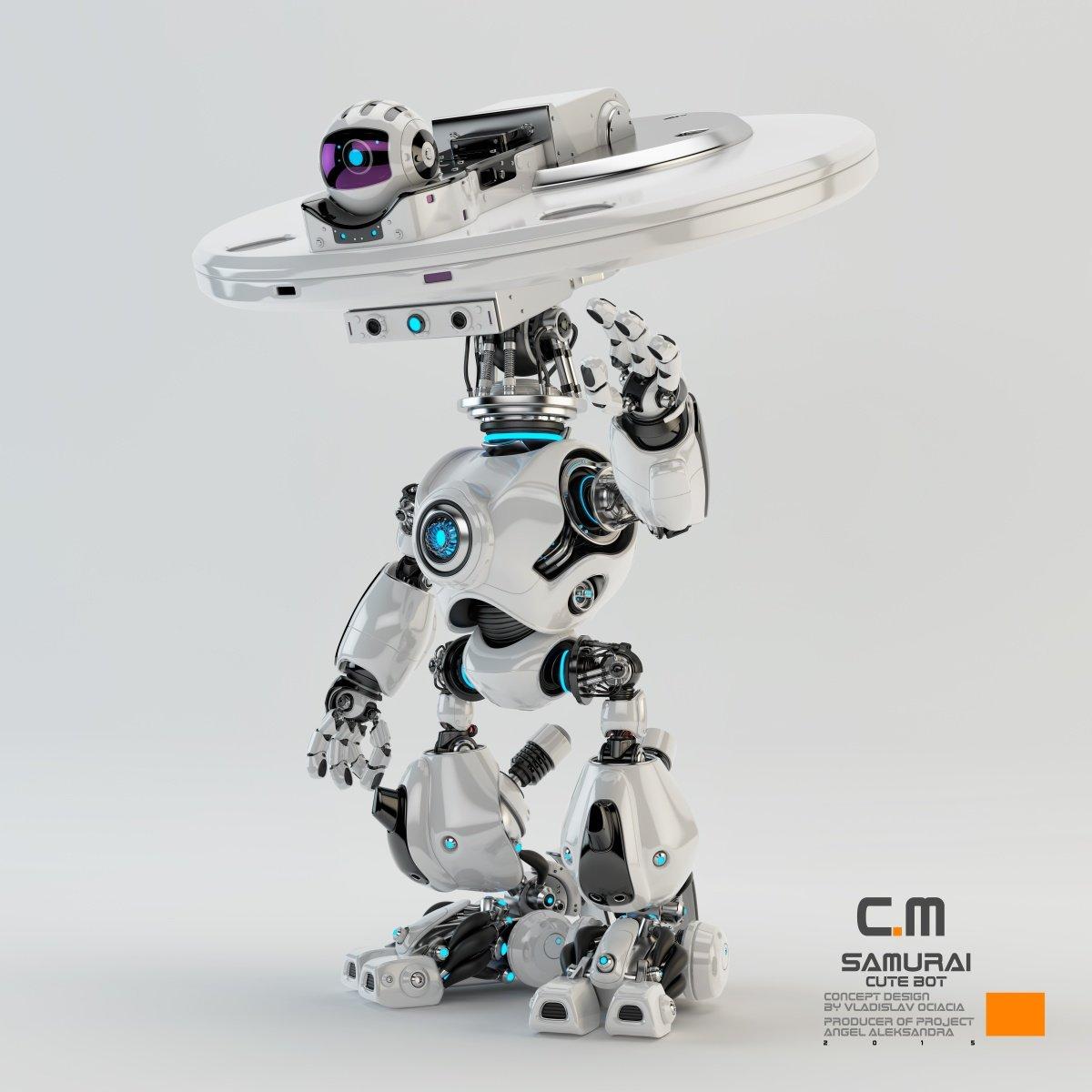 Vladislav ociacia samurai robot 8