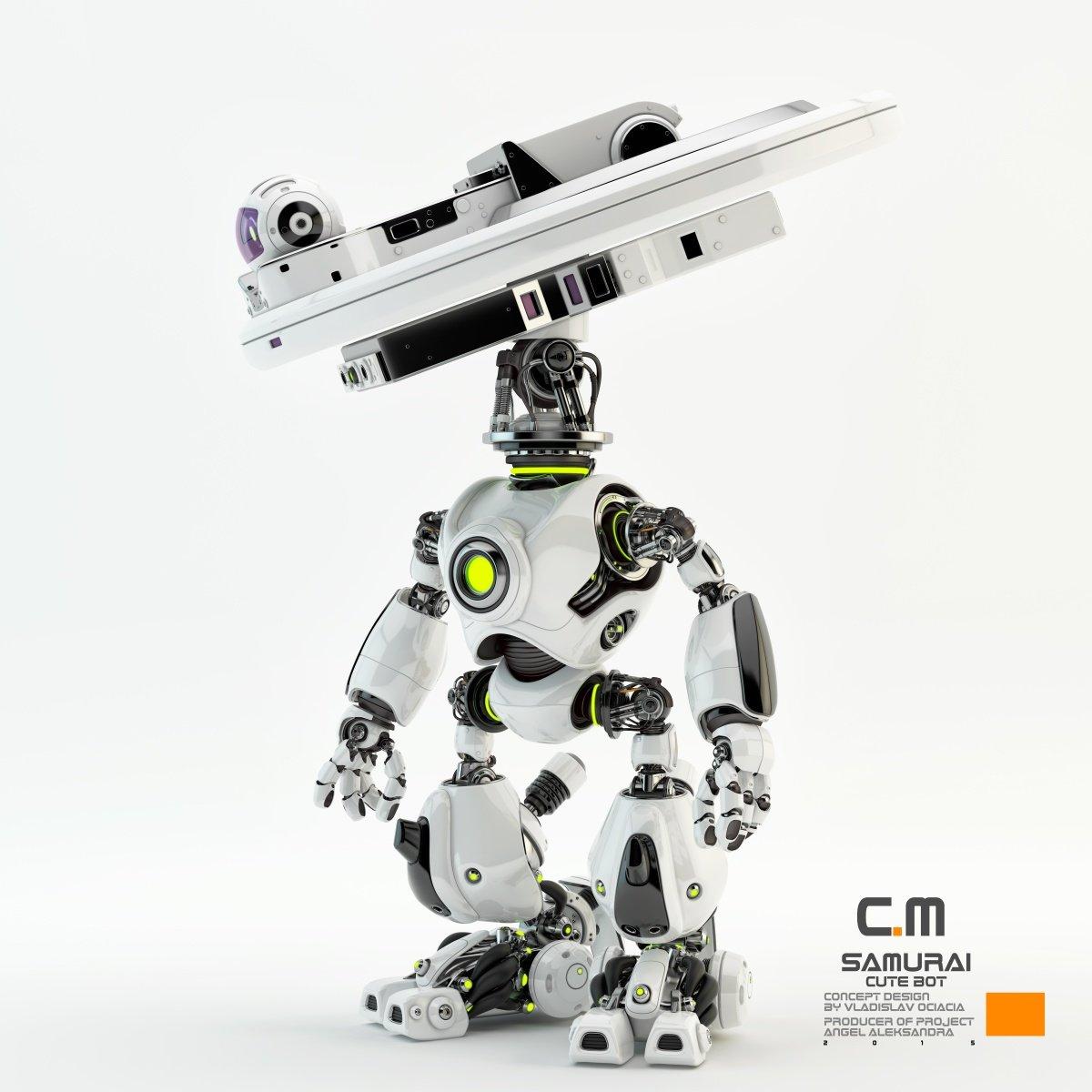Vladislav ociacia samurai robot 2