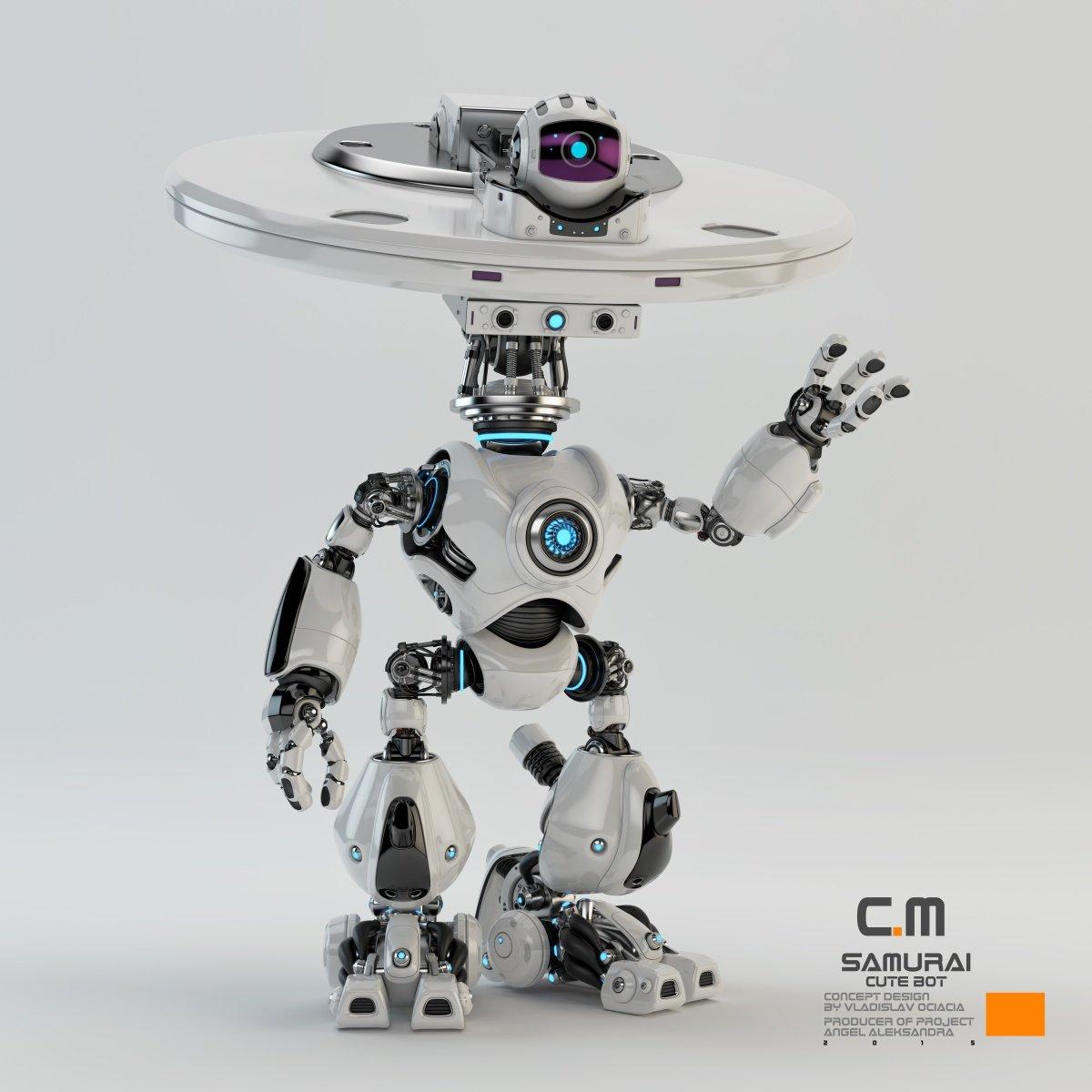 Vladislav ociacia samurai robot 9