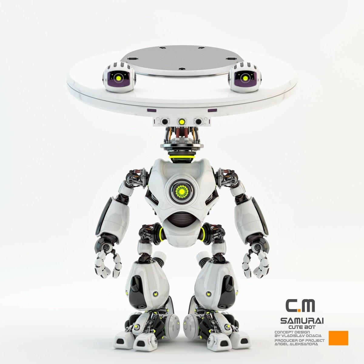 Vladislav ociacia samurai robot 7