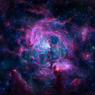 Tim barton rose nebula 1600